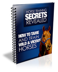 Train Your Horse & Cure Bad Habits!